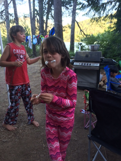 Fun around the campfire with smores and other goodies